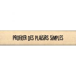 PLAISIR SIMPLE