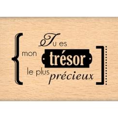 TRESOR PRECIEUX