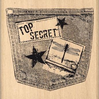 POCHE TOP SECRET