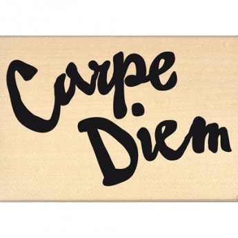 CARPE DIEM BRUSH