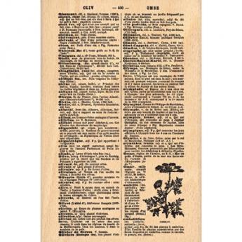 PAGE DE DICTIONNAIRE