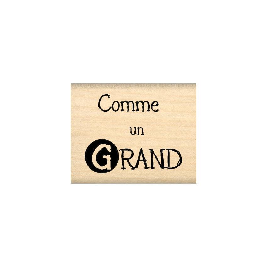 COMME UN GRAND