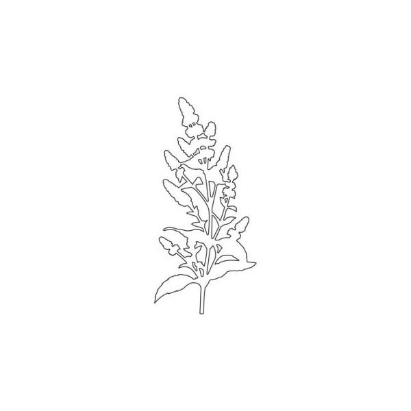 Outil de d coupe fleur des champs for Outil de decoupe