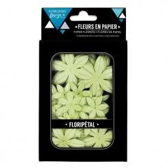 PROMO de -40% sur Fleurs Aloe vera Florilèges Design