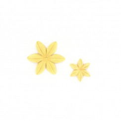 PROMO de -99.99% sur Fleurs Mimosa Florilèges Design