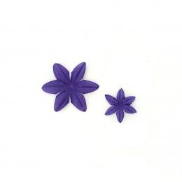 Fleurs Myrtille