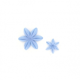 PROMO de -99.99% sur Fleurs Bleu acier Florilèges Design
