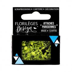 Mini attaches parisiennes Aloe vera X3